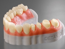 Freeprint® gingiva